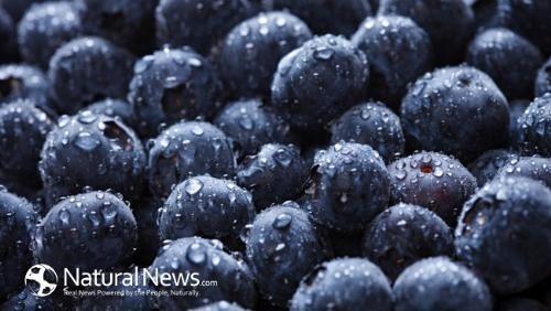 6 thực phẩm giúp ngăn ngừa ung thư phổi