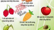 15 thực phẩm giàu chất xơ nhất