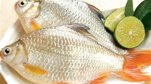 Những món ăn bài thuốc cực hay từ cá diếc