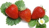 Top 7 thực phẩm lành mạnh giúp làn da sáng đẹp