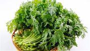 5 bài thuốc từ rau cải cúc cực tốt chữa bệnh mùa đông