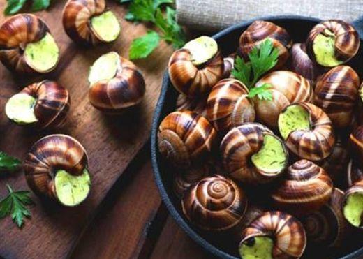 1 con ốc sên 'một kho' dinh dưỡng cần thiết cho sức khỏe
