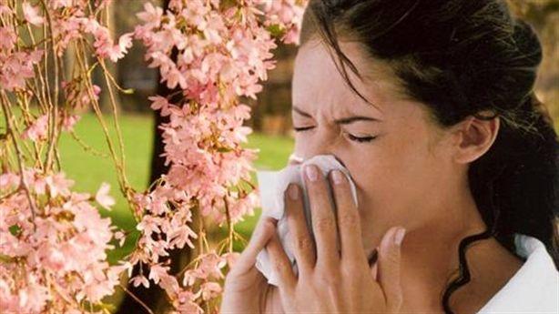 Nguyên nhân và cách phòng ngừa viêm mũi dị ứng