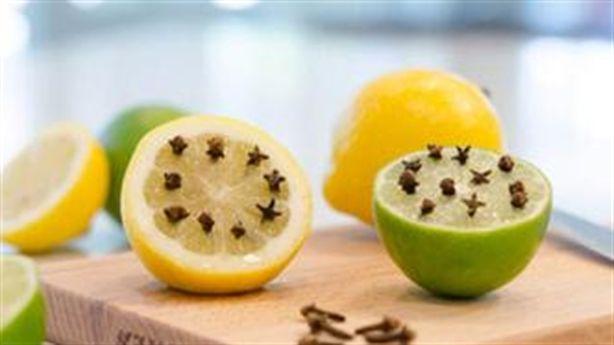 Chỉ với một quả chanh, muỗi, kiến, gián trong nhà sẽ bị diệt sạch