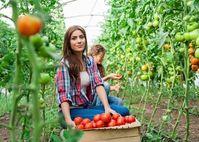Giải tỏa áp lực nhờ làm vườn - khỏe thể chất đẹp tinh thần