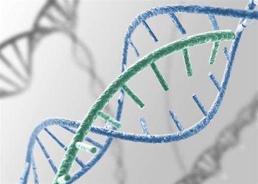 Hiểu hơn về yếu tố di truyền của căn bệnh ung thư