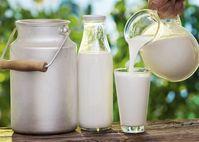 Những lợi ích không ngờ từ sữa mà ít người biết tới