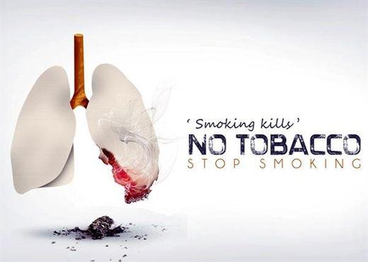 Nhân 'Ngày thế giới không thuốc lá', dưới đây là 8 loại thực phẩm hỗ trợ cai thuốc lá hiệu quả