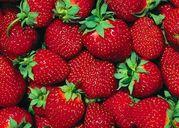 Mách bạn những loại thực phẩm tốt cho sức khỏe khi vào hè
