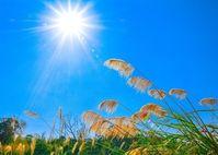 7 tác hại khi cơ thể thiếu ánh sáng mặt trời