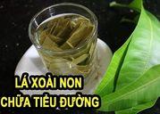 /thuoc-va-suc-khoe/tri-benh-tieu-duong-bang-la-xoai-co-thuc-su-hieu-qua-27573/