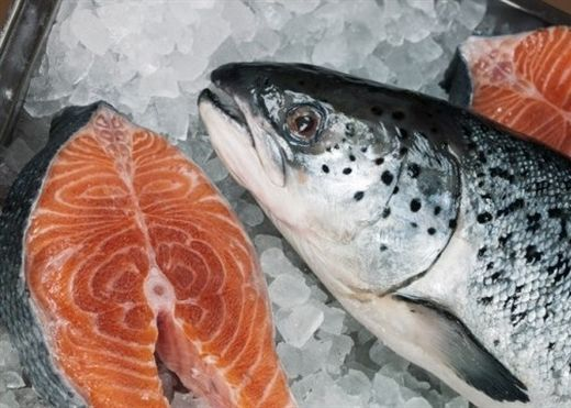 Những bộ phận của cá chứa đầy vi khuẩn, là nguyên nhân gây ung thư
