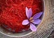 /thuoc-va-suc-khoe/saffron-nhuy-hoa-nghe-tay-la-gi-va-cong-dung-doi-voi-suc-khoe-nhu-the-nao-27808/