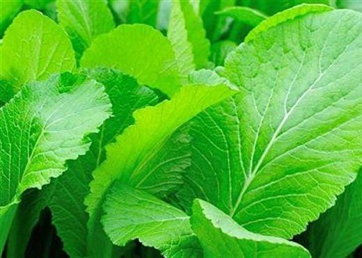 Những loại rau đánh tan mỡ bụng, ngăn ngừa lão hóa cực hiệu quả cho phụ nữ trung niên