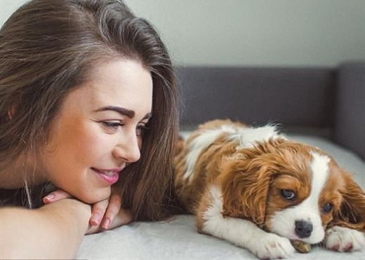 Cẩn trọng với 10 căn bệnh nguy hiểm bạn có thể lây từ thú cưng