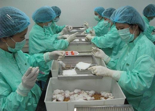 Kết quả thử nghiệm vắc xin Covid-19 trên chuột của Việt Nam ra sao?