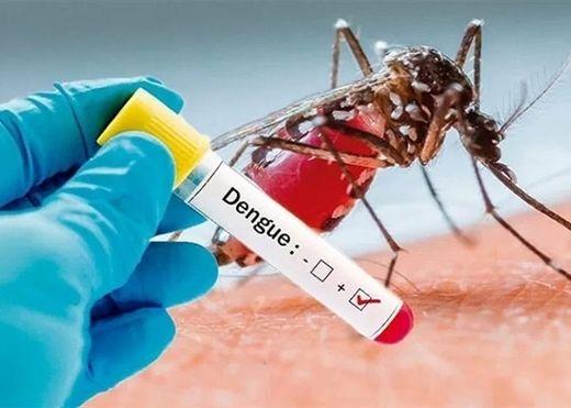 4 việc cần làm ngay để phòng dịch sốt xuất huyết bùng phát