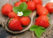 Những loại trái cây mát mùa hè giúp thanh lọc gan và giảm mụn hiệu quả