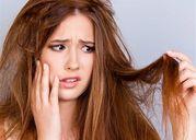 Từ nha đam đến nước cốt dừa: Đây là 5 loại dầu dưỡng tự nhiên tốt nhất cho tóc khô