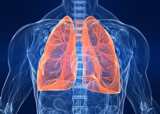 Bí quyết để có lá phổi khỏe mạnh, không bệnh tật trong mùa đông này
