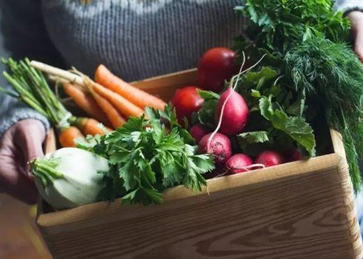 5 siêu thực phẩm mùa đông giúp giảm cân và tăng cường miễn dịch