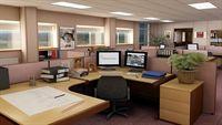 6 loại cây cảnh rất tốt trong phòng làm việc