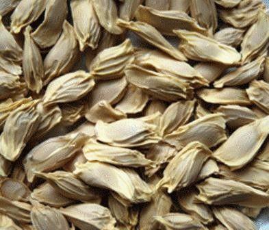 Tác dụng chữa bệnh tuyệt vời của hạt bưởi