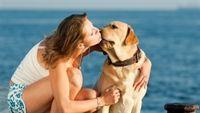 7 cách nhẹ nhàng giúp tim khỏe bất ngờ
