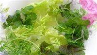 Mua bệnh vì ăn rau chưa nấu chín