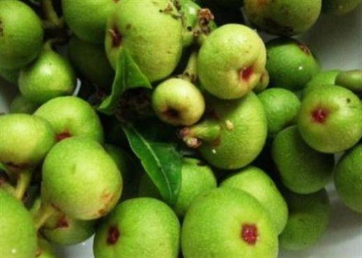 Ăn trái sung để hưởng muôn vàn tác dụng tốt cho sức khỏe