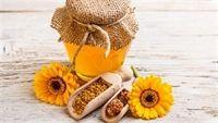 Top 5 thực phẩm ngừa ung thư phổi