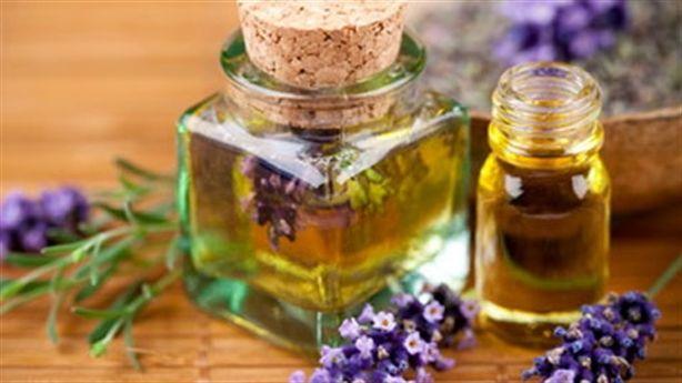 Hít tinh dầu hương thảo - tăng cường trí nhớ trong tích tắc