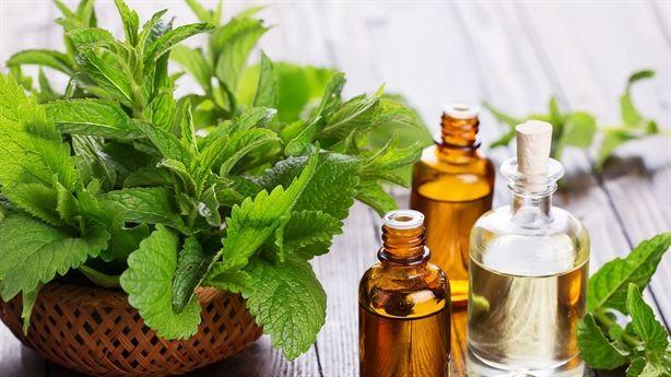 Bí quyết giúp cơ thể đẹp với những hương thơm tự nhiên