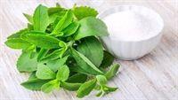Cỏ siêu ngọt stevia -