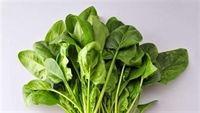 Ăn rau sống tốt cho thai phụ?