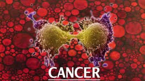 Ung thư không tự dưng xuất hiện