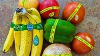 Cách phân biệt trái cây nhập khẩu biến đổi gen và hữu cơ