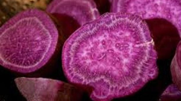 Ăn 1 củ khoai lang tím mỗi ngày để không có nỗi lo bị ung thư