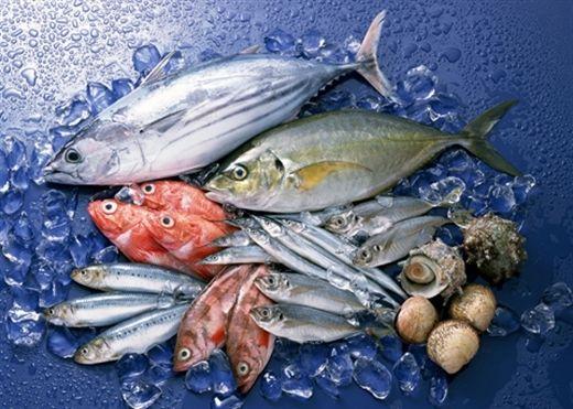 Cá có phải là ''thần dược'' chữa bệnh hen suyễn?