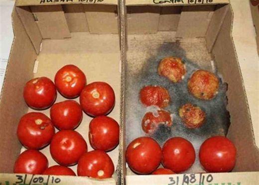 Chất bảo quản thực phẩm nguy hiểm như thế nào?