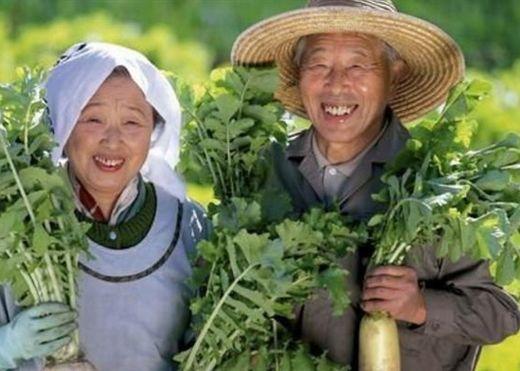 Tại sao người Nhật lại có tuổi thọ trung bình cao nhất thế giới?