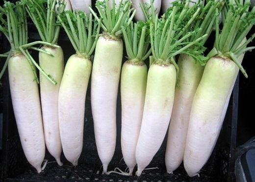 Củ cải trắng có tác dụng gì, ăn nhiều có tốt hơn không?