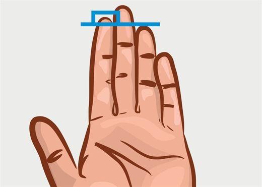 Nhìn chiều dài ngón tay, đoán tính cách người đối diện