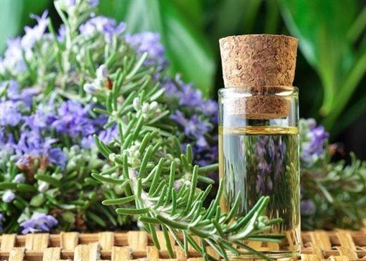 10 loại tinh dầu giúp giảm đau do GOUT hiệu quả