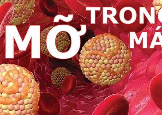 7 thực phẩm giúp hạ mỡ máu nếu ăn thường xuyên trong 1 tháng