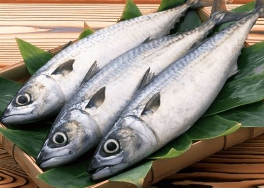 Ăn cá rất tốt, nhưng những loại cá này thì không nên ăn tùy tiện