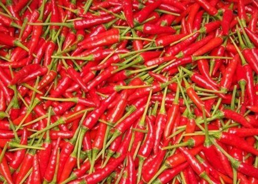 Thực phẩm rẻ bèo, đốt cháy mỡ thừa và giảm cân hiệu quả trong mùa đông