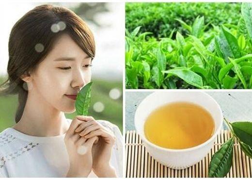 Chẳng cần mỹ phẩm đắt tiền, chỉ với trà xanh tươi, bạn sẽ có làn da đẹp không tì vết
