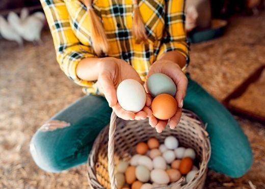 6 loại thực phẩm tốt nhất bạn nên ăn vào buổi sáng