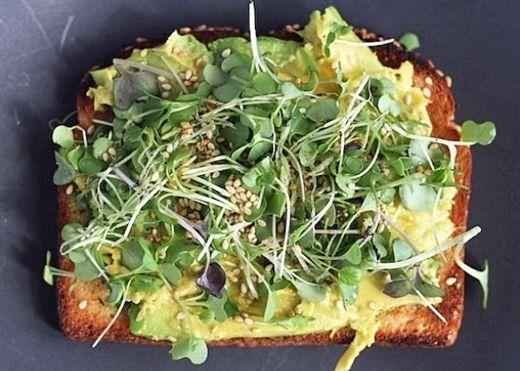 Vì sao rau mầm được coi là siêu thực phẩm cực hot trong thời gian gần đây?